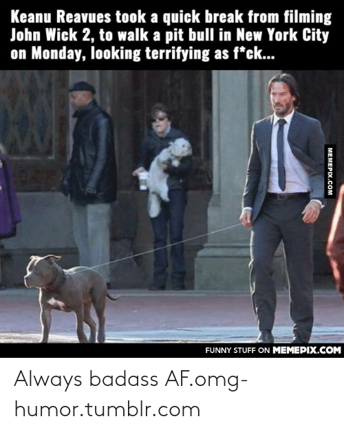 128i: Keanu Reavues took a quick break from filming  John Wick 2, to walk a pit bull in New York City  on Monday, looking terrifying as f*ck...  FUNNY STUFF ON MEMEPIX.COM  МЕМЕРIХ.Сом Always badass AF.omg-humor.tumblr.com