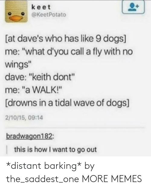 "Wings: keet  @KeetPotato  [at dave's who has like 9 dogs]  me: ""what d'you call a fly with no  wings""  dave: ""keith dont""  me: ""a WALK!""  [drowns in a tidal wave of dogs]  2/10/15, 09:14  bradwagon182:  this is how I want to go out *distant barking* by the_saddest_one MORE MEMES"