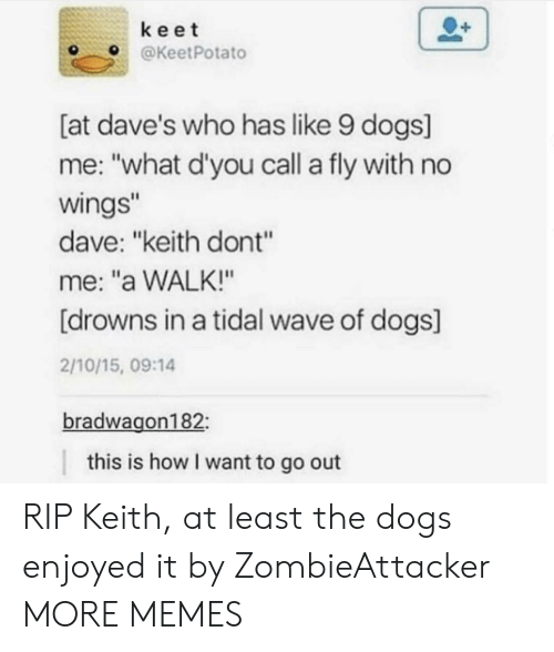 """Dank, Dogs, and Memes: keet  OKeetPotato  [at dave's who has like 9 dogs]  me: """"what d'you call a fly with no  wings  dave: """"keith dont""""  me: """"a WALK!""""  [drowns in a tidal wave of dogs]  2/10/15, 09:14  bradwagon182  this is how I want to go out RIP Keith, at least the dogs enjoyed it by ZombieAttacker MORE MEMES"""