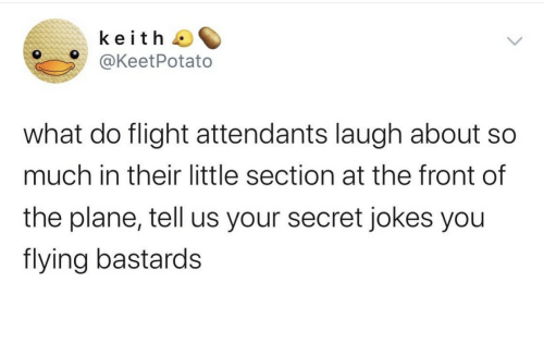 Flight: keith  @KeetPotato  what do flight attendants laugh about  much in their little section at the front of  the plane, tell us your secret jokes you  flying bastards