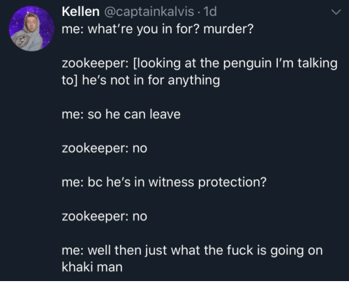 The Penguin, Fuck, and Penguin: Kellen @captainkalvis.1d  me: what're you in for? murder?  zookeeper: [looking at the penguin I'm talking  to] he's not in for anything  me: so he can leave  zookeeper: no  me: bc he's in witness protection?  zookeeper: no  me: well then just what the fuck is going on  khaki man