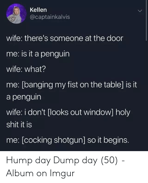 Hump Day, Imgur, and Penguin: Kellen  @captainkalvis  wife: there's someone at the door  me: is it a penguin  wife: what?  me: [banging my fist on the table] is it  a penguin  wife: i don't [looks out window] holy  shit it is  me: [cocking shotgun] so it begins. Hump day Dump day (50) - Album on Imgur