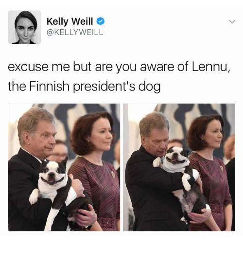 kelli: Kelly Weill  @KELLY WEILL  excuse me but are you aware of Lennu,  the Finnish president's dog