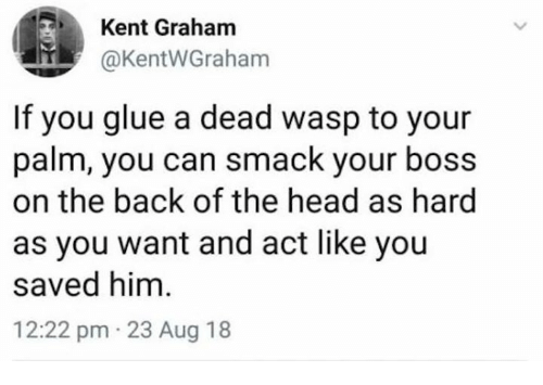 Dank, Head, and Back: Kent Graham  @KentWGraham  If you glue a dead wasp to your  palm, you can smack your boss  on the back of the head as hard  as you want and act like you  saved him  12:22 pm 23 Aug 18