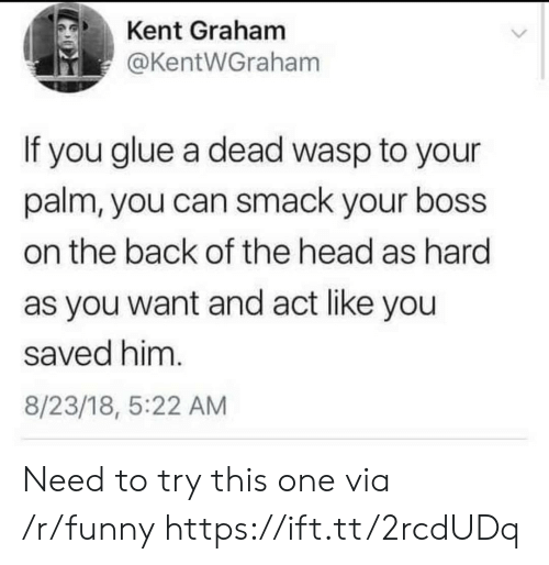 wasp: Kent Graham  @KentWGraham  If you glue a dead wasp to your  palm, you can smack your boss  on the back of the head as hard  as you want and act like you  saved him.  8/23/18, 5:22 AM Need to try this one via /r/funny https://ift.tt/2rcdUDq