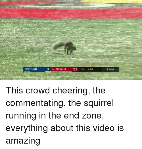 Running In The: KENT STATE  0 19 LOUISVILLE 21 2nd 4:08  3rd & 6 This crowd cheering, the commentating, the squirrel running in the end zone, everything about this video is amazing