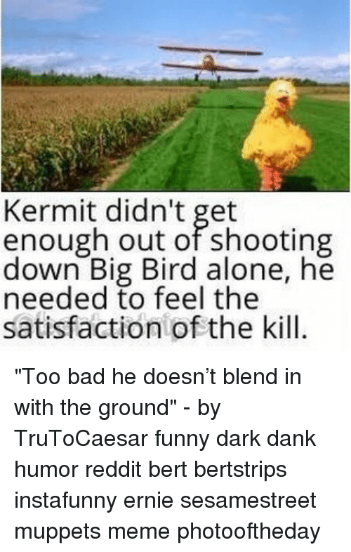 """Big Bird: Kermit didn't get  enough out of shooting  down Big Bird alone, he  needed to feel the  satisfaction of the kill. """"Too bad he doesn't blend in with the ground"""" - by TruToCaesar funny dark dank humor reddit bert bertstrips instafunny ernie sesamestreet muppets meme photooftheday"""