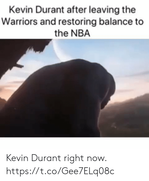 the warriors: Kevin Durant after leaving the  Warriors and restoring balance to  the NBA Kevin Durant right now. https://t.co/Gee7ELq08c