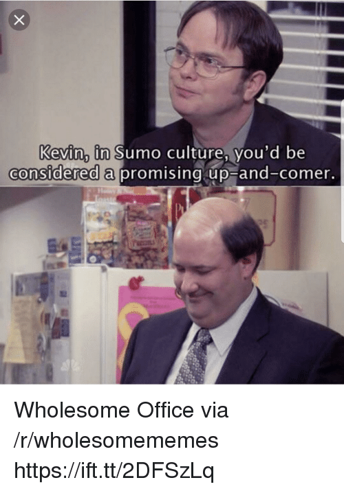 sumo: Kevin, in Sumo culture, vou'd be  considered a  promising up-and-comer Wholesome Office via /r/wholesomememes https://ift.tt/2DFSzLq