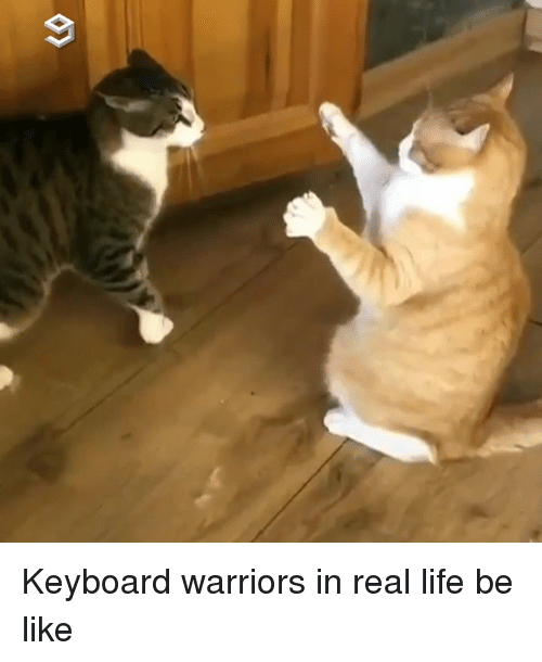 Be Like, Dank, and Life: Keyboard warriors in real life be like