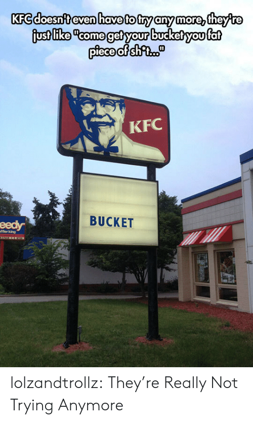 """Kfc, Tumblr, and Blog: KFC doesn't even have to try any more, theyre  just like """"come get your bucket you fat  piece of shfi.  KFC  BUCKET  eedy  fflerking lolzandtrollz:  They're Really Not Trying Anymore"""