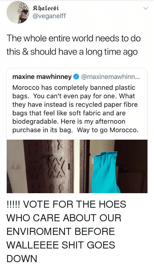 Hoes, Shit, and Time: Khaleesi  @veganelff  The whole entire world needs to do  this & should have a long time ago  maxine mawhinney@maxinemawhinn...  Morocco has completely banned plastic  bags. You can't even pay for one. What  they have instead is recycled paper fibre  bags that feel like soft fabric and are  biodegradable. Here is my afternoon  purchase in its bag. Way to go Morocco. !!!!! VOTE FOR THE HOES WHO CARE ABOUT OUR ENVIROMENT BEFORE WALLEEEE SHIT GOES DOWN