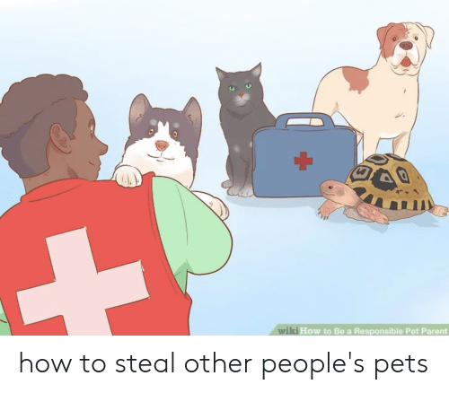 Pets, How To, and How: ki How to Be a Responsible Pet Parent  wi how to steal other people's pets