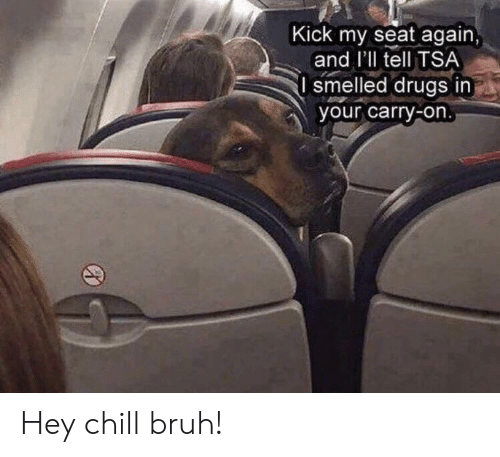 Bruh, Chill, and Drugs: Kick my seat again,  and I'll tell TSA  I smelled drugs in  your carry-on. Hey chill bruh!