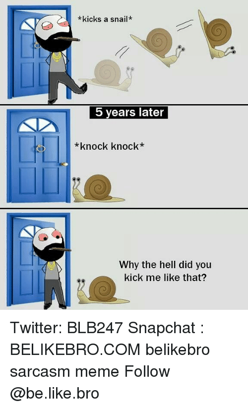Broing: *kicks a snail*  5 years later  *knock knock*  Why the hell did you  kick me like that? Twitter: BLB247 Snapchat : BELIKEBRO.COM belikebro sarcasm meme Follow @be.like.bro