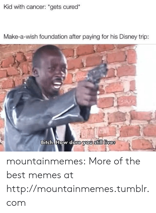 "Bitch, Disney, and Memes: Kid with cancer: ""gets cured*  Make-a-wish foundation after paying for his Disney trip:  Bitch. How dare you still livee mountainmemes:  More of the best memes at http://mountainmemes.tumblr.com"