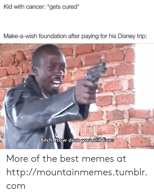 "Bitch, Disney, and Memes: Kid with cancer: ""gets cured*  Make-a-wish foundation after paying for his Disney trip:  Bitch. How dare you still livee More of the best memes at http://mountainmemes.tumblr.com"