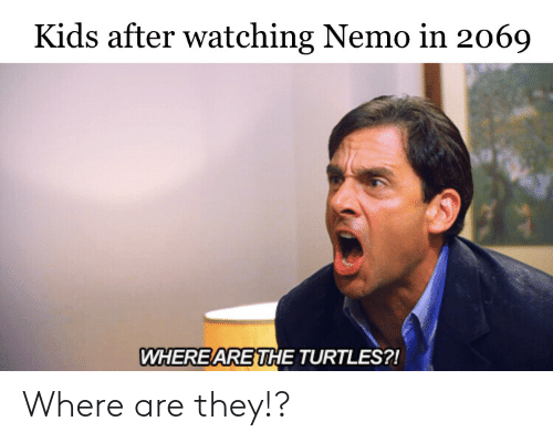 turtles: Kids after watching Nemo in 2069  WHERE ARE THE TURTLES?! Where are they!?