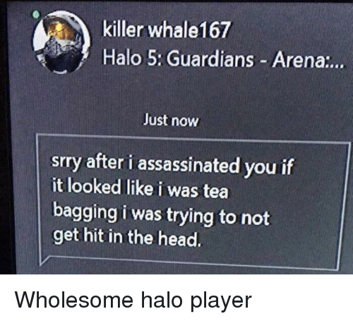 Halo, Head, and Wholesome: killer whale167  Halo 5: Guardians Arena:..  Just now  srry after i assassinated you if  it looked like i was tea  bagging i was trying to not  get hit in the head. <p>Wholesome halo player</p>