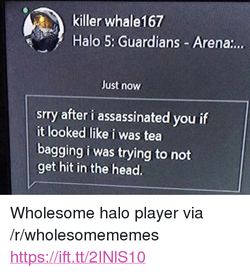 "Halo, Head, and Wholesome: killer whale167  Halo 5: Guardians Arena:..  Just now  srry after i assassinated you if  it looked like i was tea  bagging i was trying to not  get hit in the head. <p>Wholesome halo player via /r/wholesomememes <a href=""https://ift.tt/2INlS10"">https://ift.tt/2INlS10</a></p>"