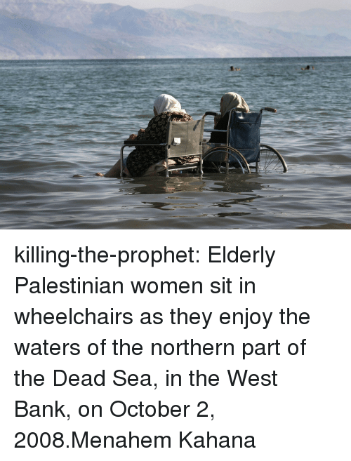 Tumblr, Bank, and Blog: killing-the-prophet: Elderly Palestinian women sit in wheelchairs as they enjoy the waters of the northern part of the Dead Sea, in the West Bank, on October 2, 2008.Menahem Kahana