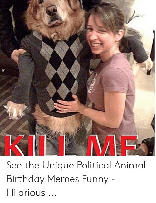 Birthday Funny And Memes KILLME See The Unique Political Animal