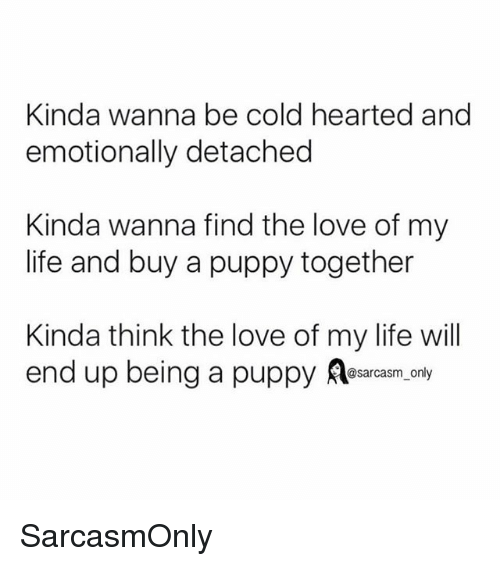 Funny, Life, and Love: Kinda wanna be cold hearted and  emotionally detached  Kinda wanna find the love of my  life and buy a puppy together  Kinda think the love of my life will  end up being a puppy Aesarcasm. only SarcasmOnly