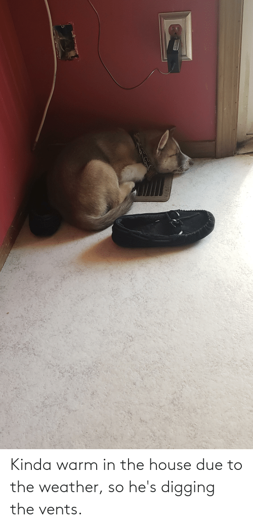 The Weather: Kinda warm in the house due to the weather, so he's digging the vents.