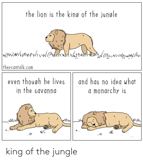The: king of the jungle