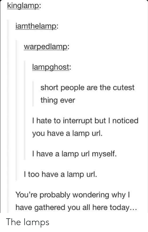 Gathered: kinglamp:  iamthelamp:  warpedlamp:  lampghost  short people are the cutest  thing ever  I hate to interrupt but I noticed  you have a lamp url  I have a lamp url myself.  I too have a lamp url.  You're probably wondering why I  have gathered you all here today... The lamps