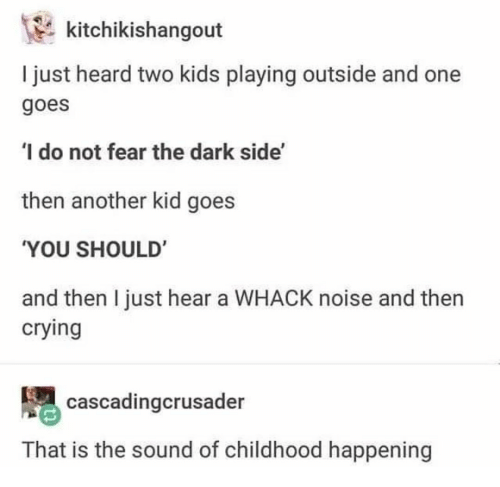 dark side: kitchikishangout  I just heard two kids playing outside and one  goes  I do not fear the dark side'  then another kid goes  YOU SHOULD'  and then I just hear a WHACK noise and then  crying  cascadingcrusader  That is the sound of childhood happening