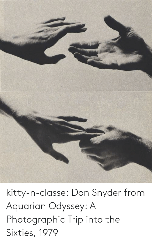 trip: kitty-n-classe:    Don Snyder from Aquarian Odyssey: A Photographic Trip into the Sixties, 1979