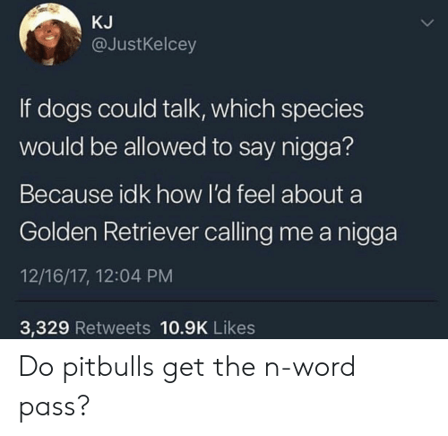 Dogs, Golden Retriever, and Word: KJ  @JustKelcey  If dogs could talk, which species  would be allowed to say nigga?  Because idk how l'd feel about a  Golden Retriever calling me a nigga  12/16/17, 12:04 PM  3,329 Retweets 10.9K Likes Do pitbulls get the n-word pass?