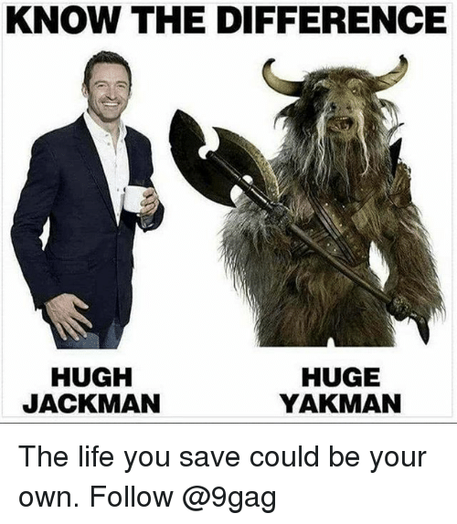 9gag, Life, and Memes: KNOW THE DIFFERENCE  HUGH  JACKMAN  HUGE  YAKMAN The life you save could be your own. Follow @9gag