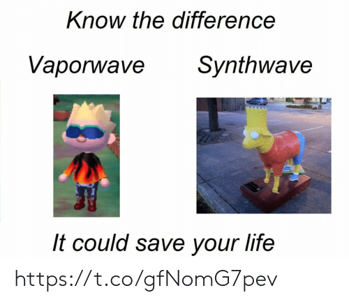 Life,  Know, and  Your Life: Know the difference  Vaporwave  Synthwave  It could save your life https://t.co/gfNomG7pev
