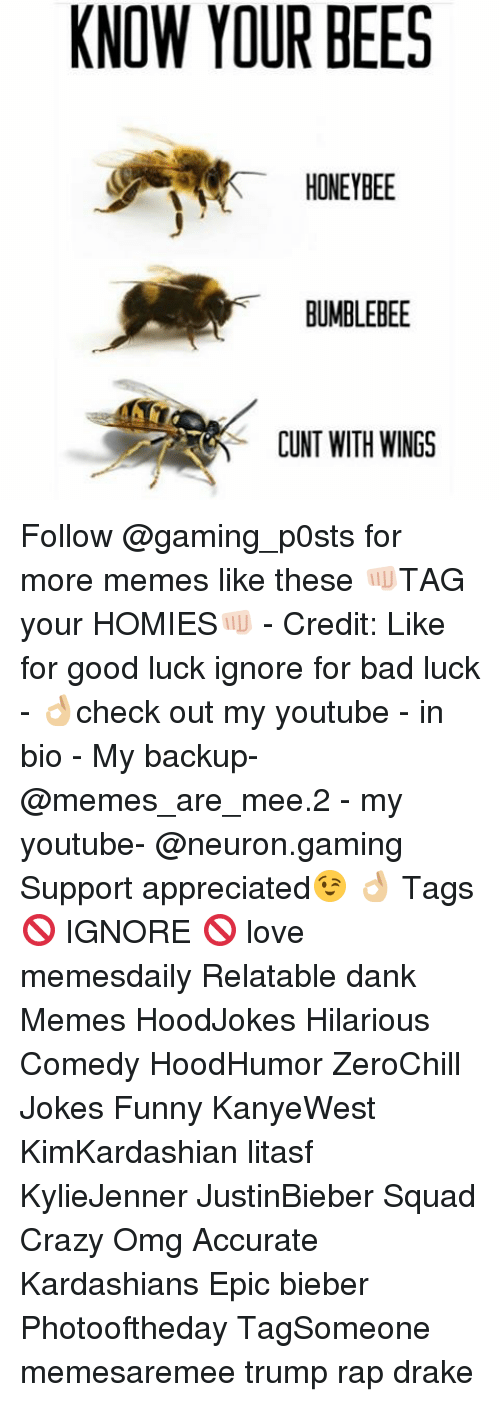 Bad, Crazy, and Dank: KNOW YOUR BEES  HONEYBEE  BUMBLEBEE  CUNT WITH WINGS Follow @gaming_p0sts for more memes like these 👊🏻TAG your HOMIES👊🏻 - Credit: Like for good luck ignore for bad luck - 👌🏼check out my youtube - in bio - My backup- @memes_are_mee.2 - my youtube- @neuron.gaming Support appreciated😉 👌🏼 Tags 🚫 IGNORE 🚫 love memesdaily Relatable dank Memes HoodJokes Hilarious Comedy HoodHumor ZeroChill Jokes Funny KanyeWest KimKardashian litasf KylieJenner JustinBieber Squad Crazy Omg Accurate Kardashians Epic bieber Photooftheday TagSomeone memesaremee trump rap drake