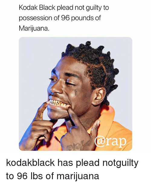 Memes, Rap, and Black: Kodak Black plead not guilty to  possession of 96 pounds of  Marijuana.  @rap kodakblack has plead notguilty to 96 lbs of marijuana