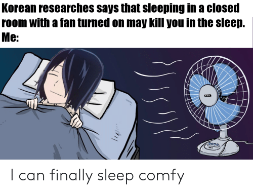Anime, Sleeping, and Korean: Korean researches says that sleeping in a closed  room with a fan turned on may kill you in the sleep.  Мe:  FAN  FAN I can finally sleep comfy