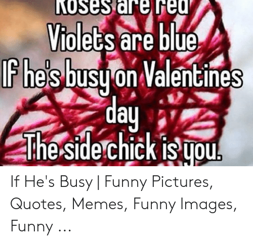 KOses Are Fed Violets Are Blue Fhes Busu on Valentines Day ...