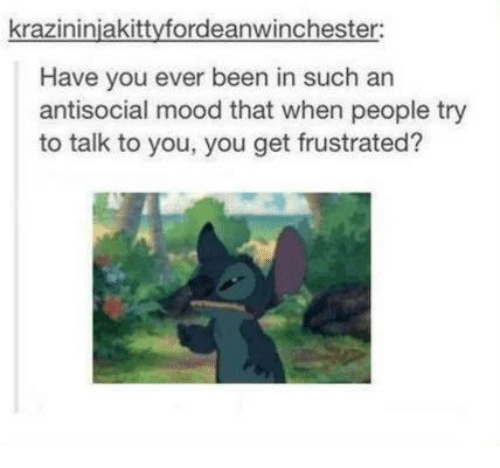 Antisociable: krazininiakittyfordeanwinchester:  Have you ever been in such an  antisocial mood that when people try  to talk to you, you get frustrated?