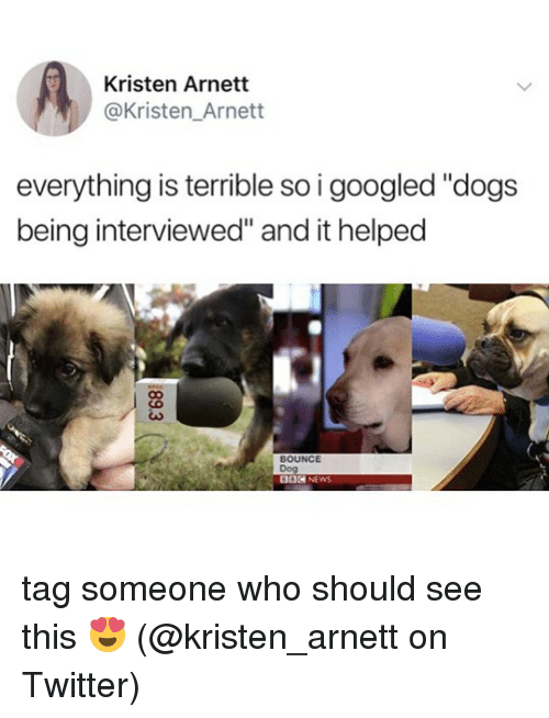 """Kristen: Kristen Arnett  @Kristen_Arnett  everything is terrible so i googled """"dogs  being interviewed"""" and it helped  BOUNCE  Dog  002 NEWS tag someone who should see this 😍 (@kristen_arnett on Twitter)"""