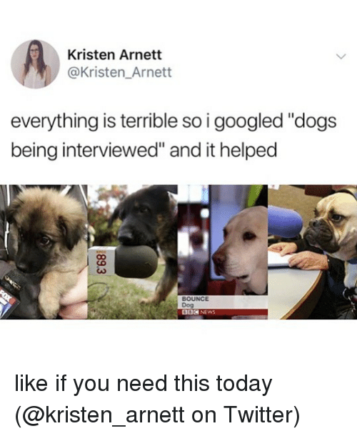 """Kristen: Kristen Arnett  @Kristen_Arnett  everything is terrible so i googled """"dogs  being interviewed"""" and it helped  BOUNCE  Dog  002 NEWS like if you need this today (@kristen_arnett on Twitter)"""