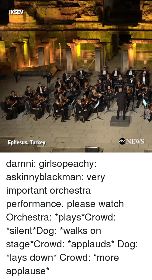 """Lay's, News, and Tumblr: KSEV  Ephesus, Turkey  abe NEWS darnni:  girlsopeachy:  askinnyblackman:  very important orchestra performance. please watch  Orchestra: *plays*Crowd: *silent*Dog: *walks on stage*Crowd: *applauds*   Dog: *lays down* Crowd: """"more applause*"""