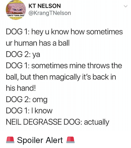"""orks: KT NELSON  KrangTNelson  ORK'S """"cOOL DAD  DOG 1: hey u know how sometimes  ur human has a ball  DOG 2: ya  DOG 1: sometimes mine throws the  ball, but then magically it's back in  his hand!  DOG 2: omg  DOG 1: I know  NEIL DEGRASSE DOG: actually 🚨 Spoiler Alert 🚨"""