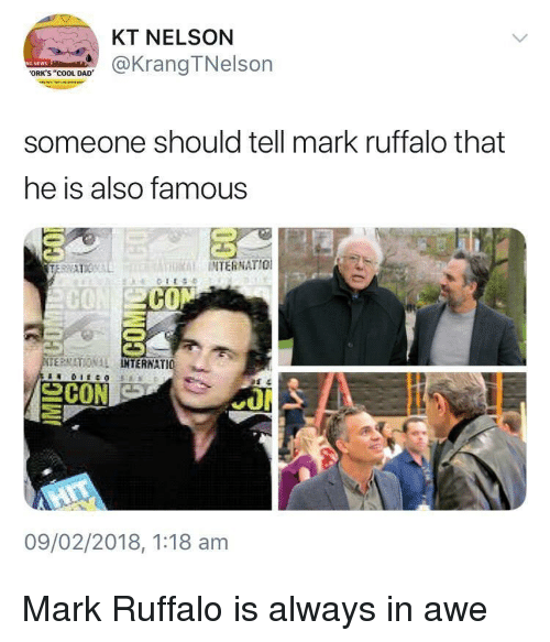 """orks: KT NELSON  @KrangTNelson  ORK'S """"COOL DAD  someone should tell mark ruffalo that  he is also famous  THRİİ INTERNATIO!  CO  ERMATIONAL  TERNATIO 뇨  09/02/2018, 1:18 am Mark Ruffalo is always in awe"""
