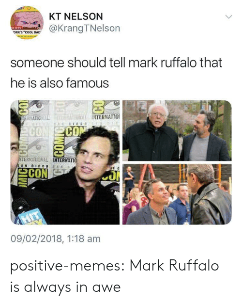 """orks: KT NELSON  @KrangTNelson  ORK'S """"COOL DAD  someone should tell mark ruffalo that  he is also famous  THRİİ INTERNATIO!  CO  ERMATIONAL  TERNATIO 뇨  09/02/2018, 1:18 am positive-memes: Mark Ruffalo is always in awe"""