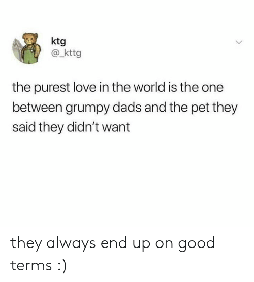 grumpy: ktg  @kttg  the purest love in the world is the one  between grumpy dads and the pet they  said they didn't want they always end up on good terms :)