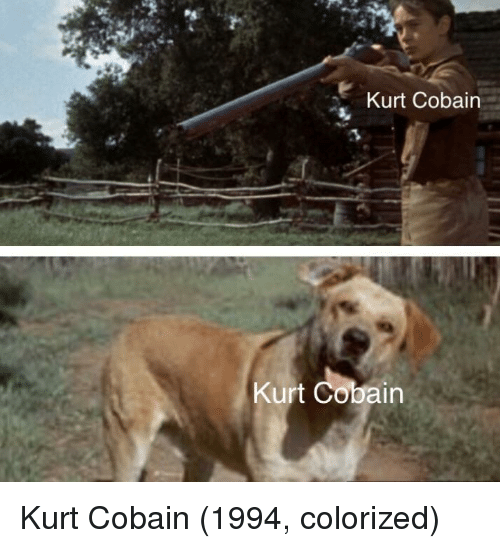 Kurt Cobain: Kurt Cobain  Kurt Cobain Kurt Cobain (1994, colorized)