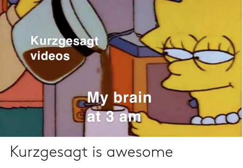 Videos, Brain, and Awesome: Kurzgesagt  videos  My brain  Cat 3 am Kurzgesagt is awesome