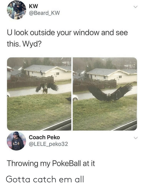 throwing: KW  @Beard_KW  U look outside your window and see  this. Wyd?  Coach Peko  @LELE_peko32  Throwing my PokeBall at it Gotta catch em all